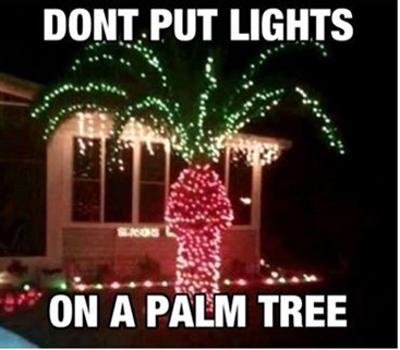 palm-tree-christmas-lights
